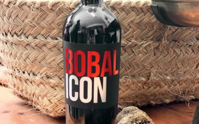 BOBAL ICON 2019